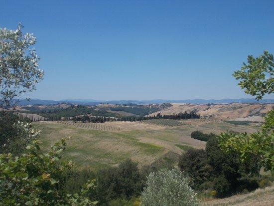 Asciano, Italy: Crete senesi - Panorama