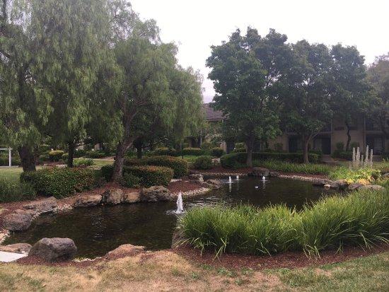 Pleasanton, CA: photo3.jpg