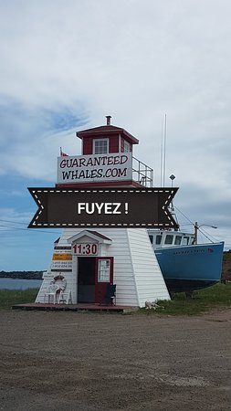 Pleasant Bay, Canadá: 20170616_192627_large.jpg