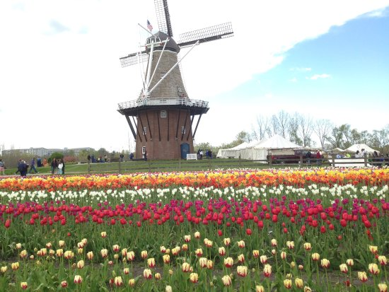 Windmill Island Gardens: photo9.jpg