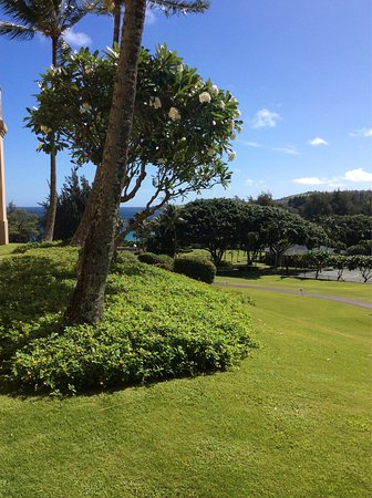 The Ritz-Carlton, Kapalua: photo0.jpg