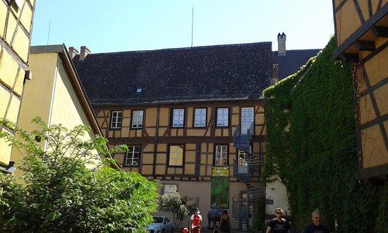 Le Musee d'Histoire Naturelle et d'Ethnographie . το κτήριο .