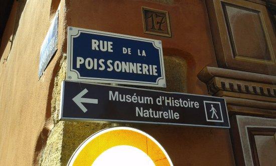 Le Musee d'Histoire Naturelle et d'Ethnographie . Η ενημερωτική πινακίδα .