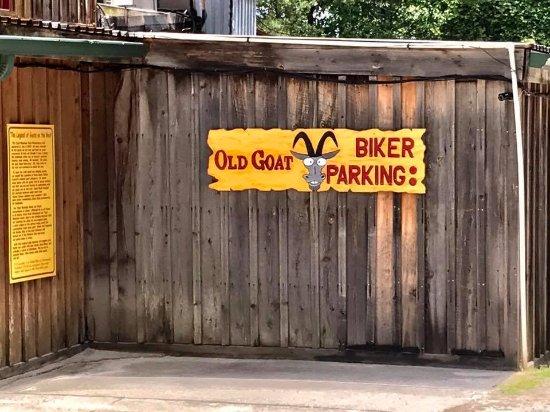 Tiger, Gürcistan: Biker Parking