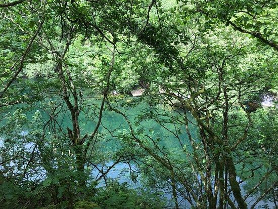 Pendoggett, UK: Lake View private camping pitch