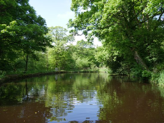 Rivelin Valley Nature Trail.