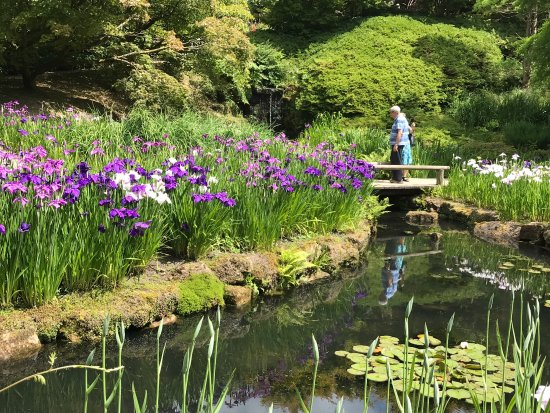 Haywards Heath, UK: Wakehurst Place National Trust Property in beautiful West Sussex on a stunning summer day. Perfe