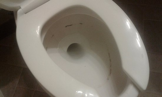 Grafton, ND: mold ring after flushing 3 times