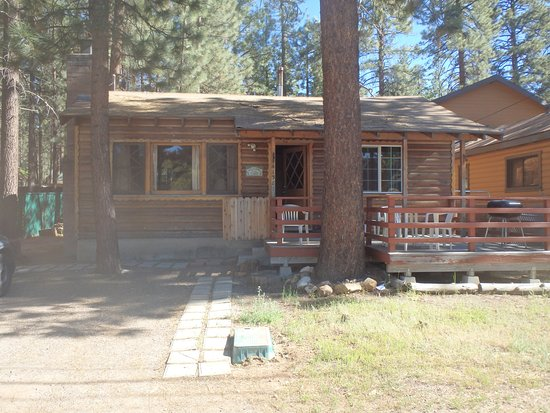 Sleepy Forest Cottages : Front view of our cabin
