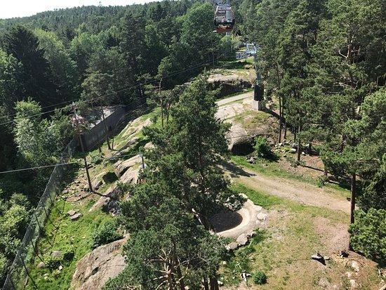 Kolmarden, Suecia: photo3.jpg