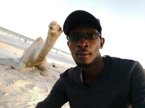 Nyali Beach: FB_IMG_1497740444122_large.jpg
