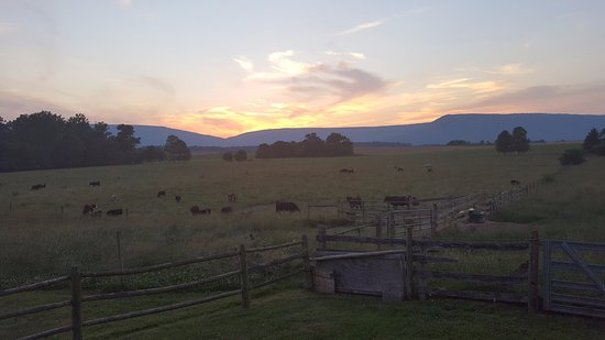 Piney Hill Bed & Breakfast: Sunset off Hurley Byrd Cottage deck