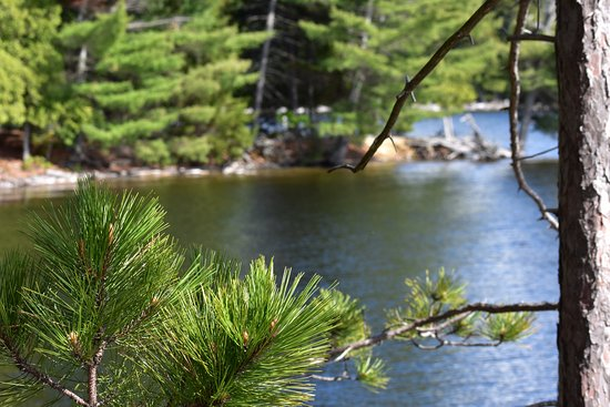Lily Bay State Park: Great relaxing spot