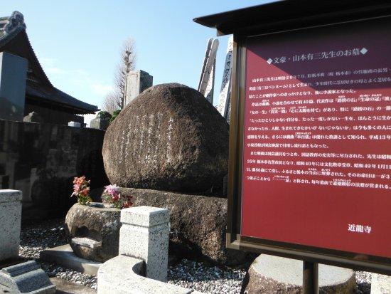 近龍寺(山本有三墓)