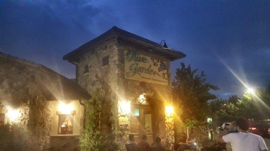 Captivating Olive Garden