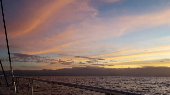 Sailaway Reef and Island Tours : photo0.jpg