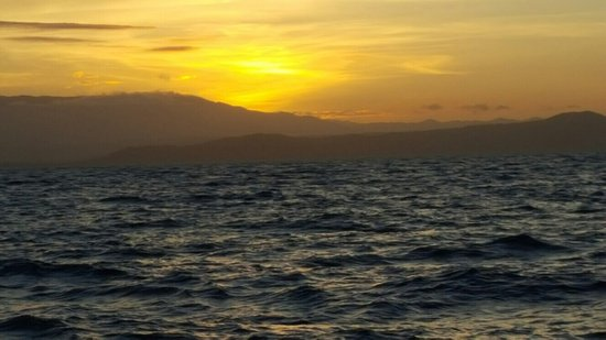 Sailaway Reef and Island Tours : photo1.jpg