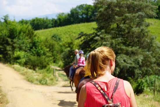 Five Oaks Riding Stables: Along the trail