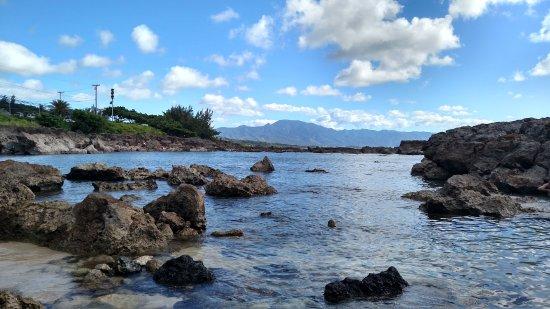 Massimo Sport Hawaii Tours: Snorkeling area