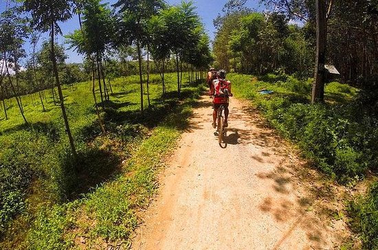 Krabi Countryside Eco Cycling Tour - Multiple Trails