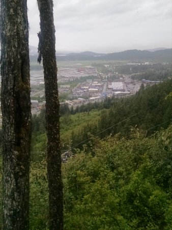 Glacier Gardens Rainforest Adventure: From the top of the mountain, you get a wonderful view of Juneau.