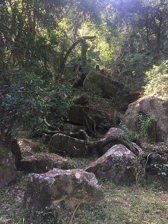 Bulwer, Sudáfrica: photo0.jpg