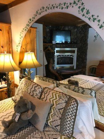 Heavenly Valley Lodge Bed & Breakfast: The bear room