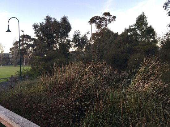 Malvern, Australia: Percy Treyvaud Reserve