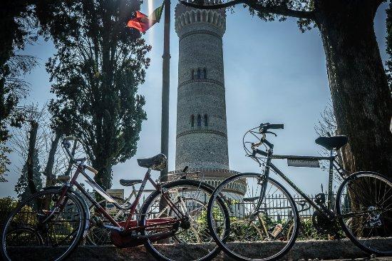 San Martino della Battaglia, Italy: torre imponente che già da lontano tra le campagne si fa notare