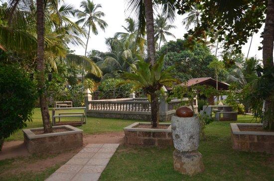 Wunderbar Beach Club Hotel: Gepflegte Gartenanlage