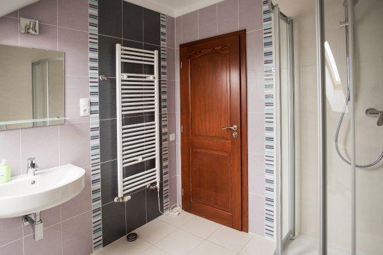 Bozi Dar, สาธารณรัฐเช็ก: Koupelna Apartmán č.4