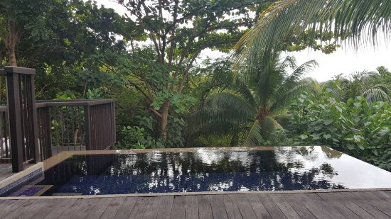 Anse Takamaka, Seychelles: IMG-20170618-WA0004_large.jpg