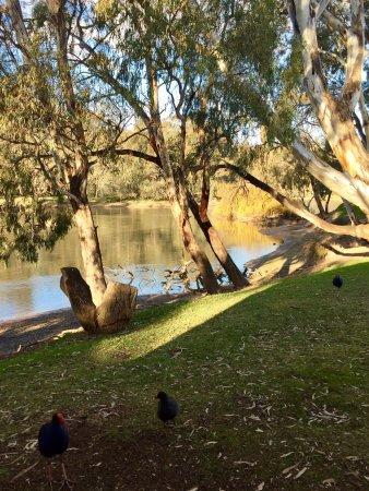 Swan Hill, Australia: photo1.jpg