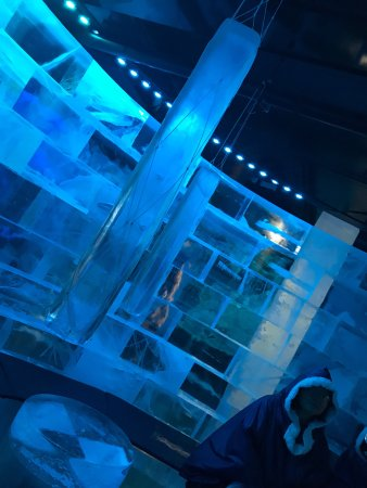 ICEBAR by ICEHOTEL Stockholm : photo5.jpg