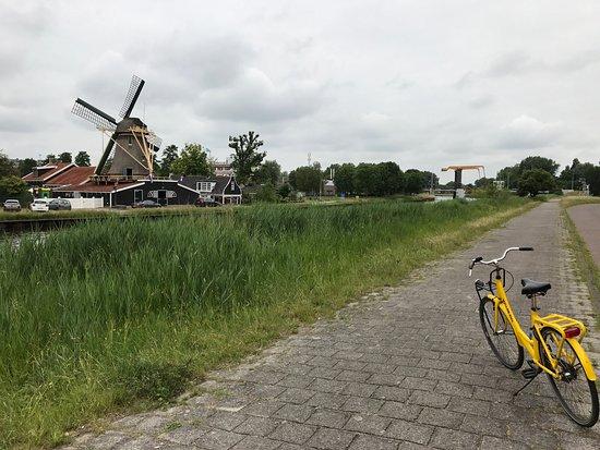 Yellow Bike Tours & Rental : Two icons