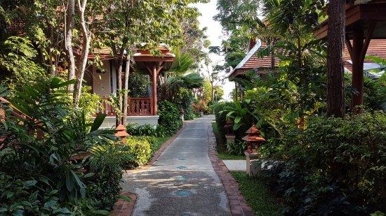 Samui Buri Beach Resort Picture
