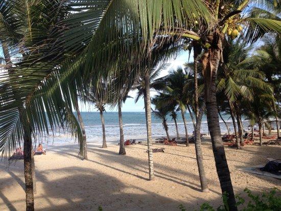Amani Tiwi Beach Resort: photo1.jpg