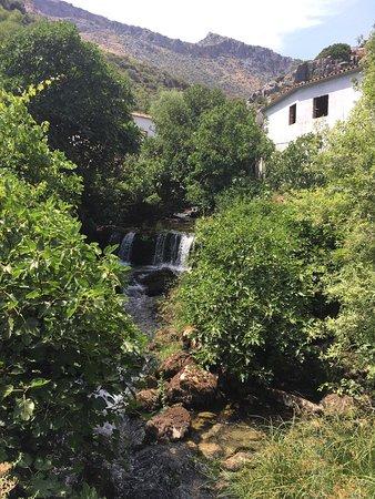 Benaoján, Espagne : photo4.jpg