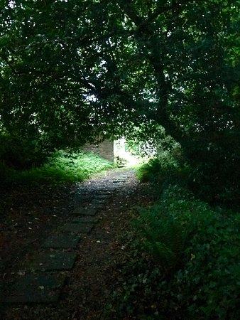 Mountrath, Irlanda: photo5.jpg