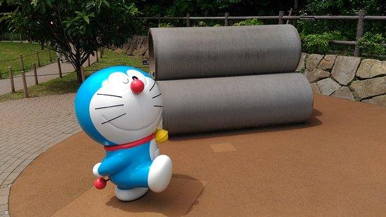 Zdjęcie Kawasaki