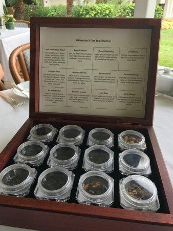 Orchids: 紅茶サンプル