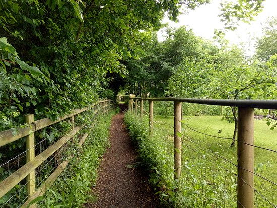 Lower Slaughter, UK: path