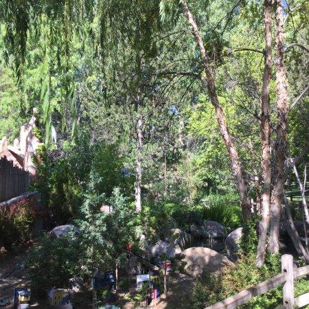ABQ BIOPARK BOTANIC GARDEN - Picture of ABQ BioPark Botanic Garden ...