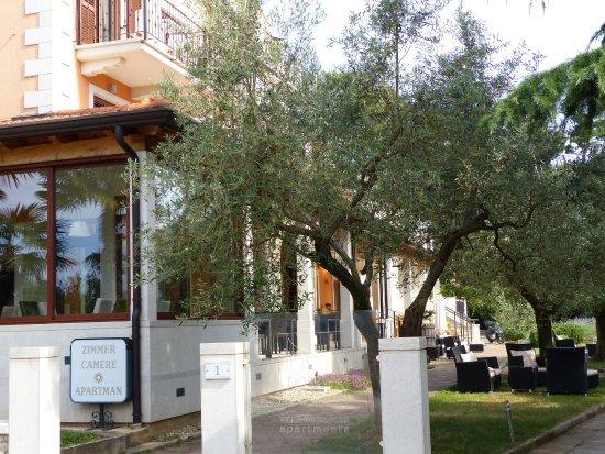 Villa Dobravac Picture