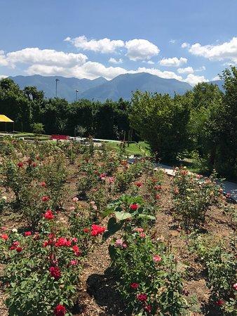 Albergo Losone: Ein Garten Eden