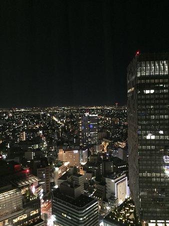 Nagoya Marriott Associa Hotel: photo5.jpg