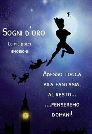 Sona, Italy: IMG-20170618-WA0002_large.jpg