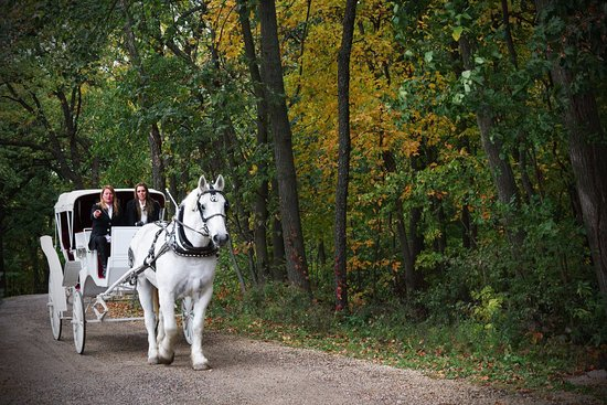 Galena, IL: Carriage Ride services offering 3 locations