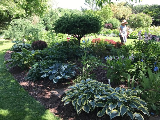 Cady Falls Nursery in Morrisville Vermont is gorgeous . Designed around classic English border g