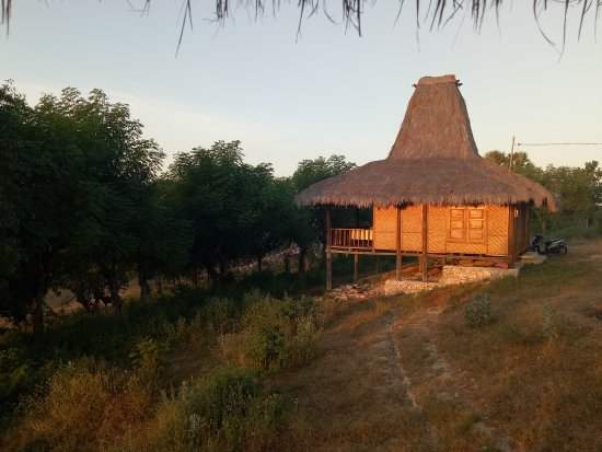 Waingapu, Indonesien: Kampung Raja Prailiu - Prailiu Royal Village